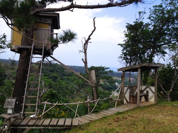 A precarious tree house